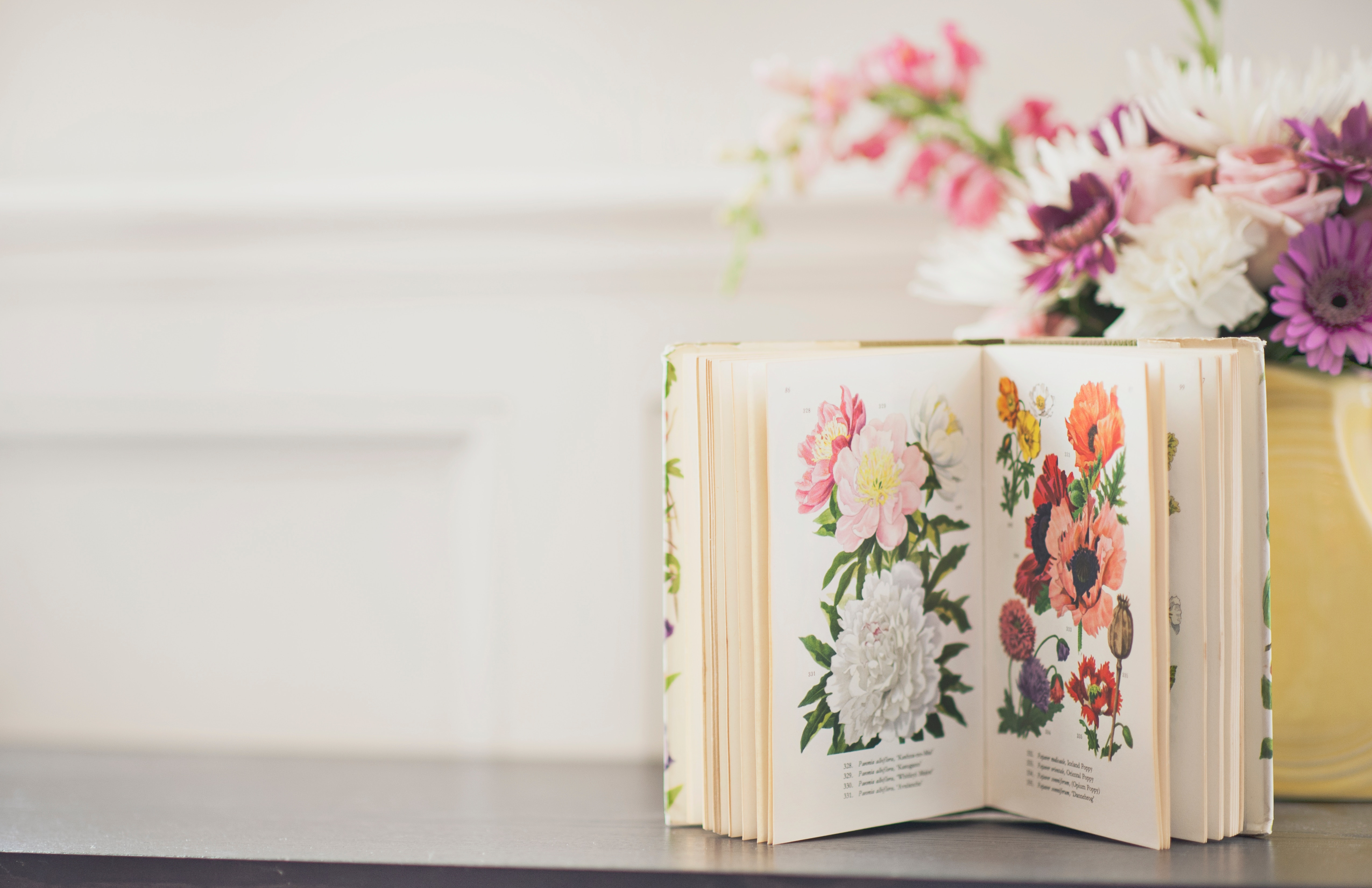 An image of a book of flowers, a treasured gift left behind by a loved one as discussed in bespoke funeral services by Derren Gallo of Blossom Ceremonies.